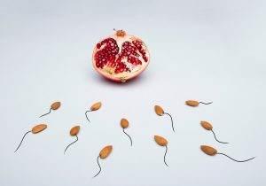 low sperm count, oligospermia, male infertility